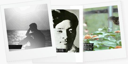 다큐 문학 기행 : 영원한 청년 작가 5